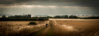 """NORFOLKLIGHT"",""MICK BYE'S COLOUR PHOTOGRAPHS"" ""THE NORFOLK COUNTRYSIDE AND ITS PEOPLE"""